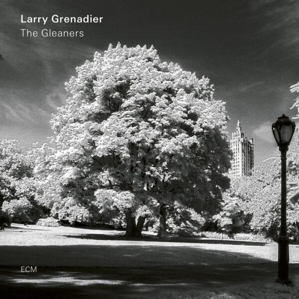 Audio Elite Larry Grenadier – The Gleaners