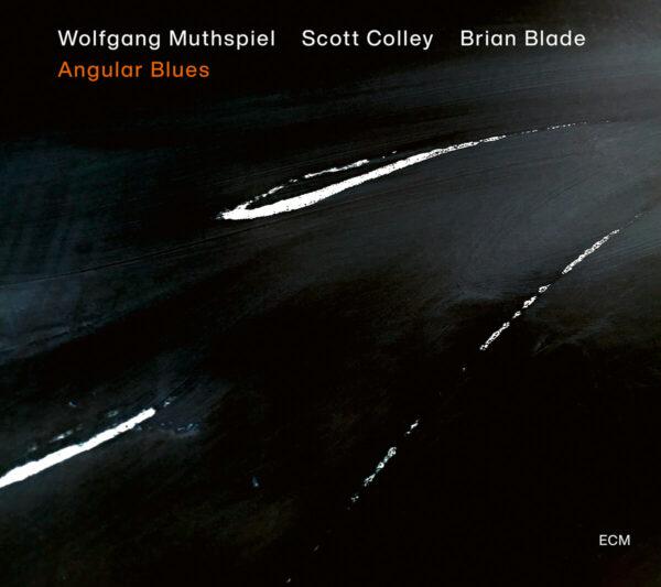 Audio Elite Wolfgang Muthspiel, Scott Colley, Brian Blade – Angular Blues